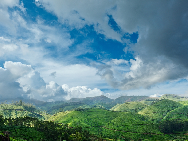 Best of Kerala - Munnar sightseeing